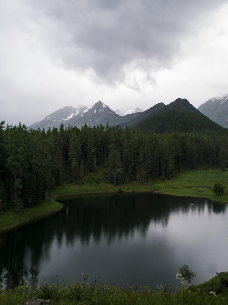 Алтай 2014